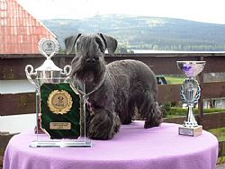 Pamatka with her trophies in the Czech Republic